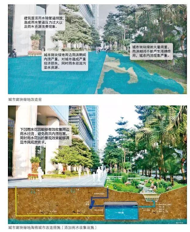 24种海绵城市设计措施全图解!_26