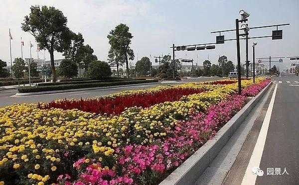 城市干道植物配置,实用干货不得不看!_27