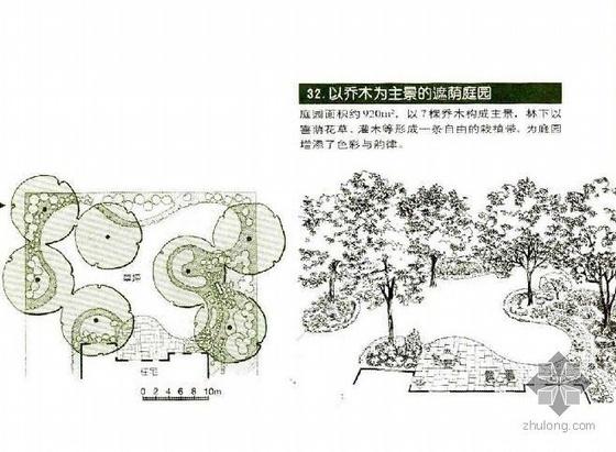 以乔木为主的遮荫庭院景观设计
