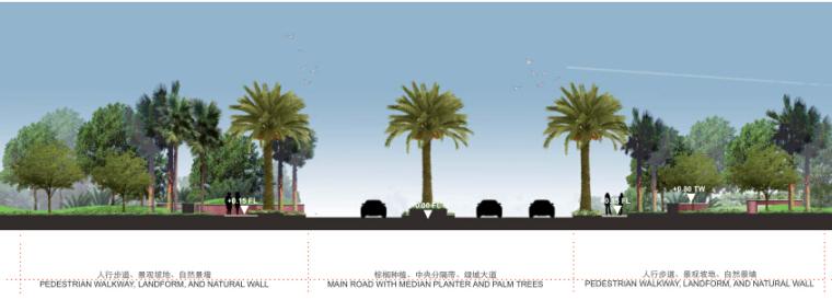 酒店景观设计——棕榈主干道景观剖面