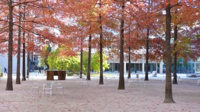 学习|景观空间尺度详解