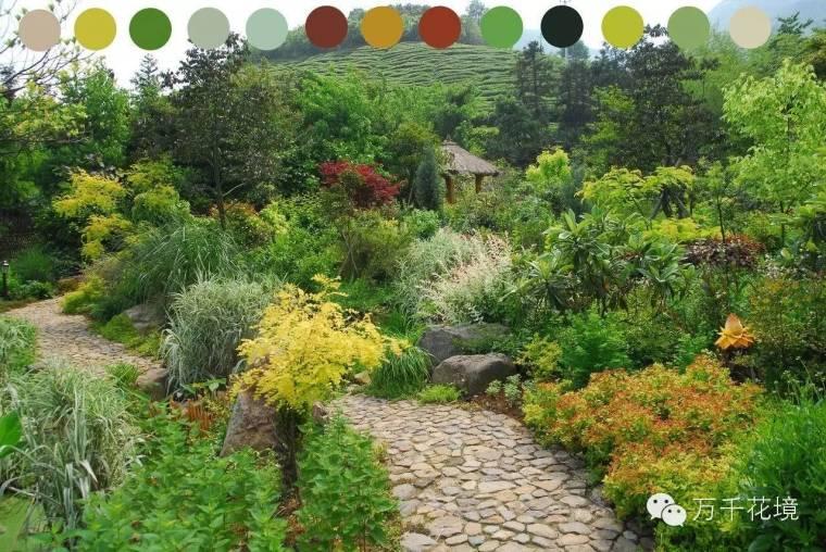 教你如何进行花境中的色彩配置-015.jpg