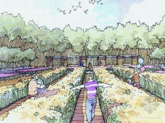山东城市滨海开放空间概念规划设计-图7
