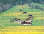 景观升级,加码乡村美好生活空间营造