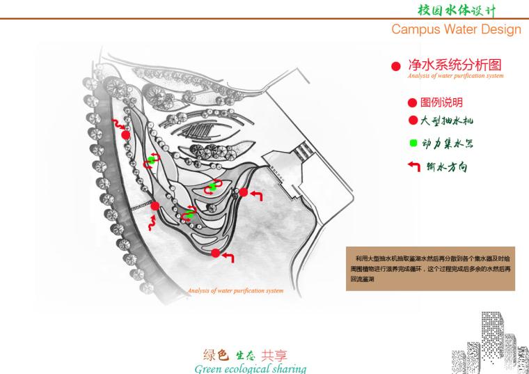 鉴湖水-校园净水生态概念设计(毕业设计)_8