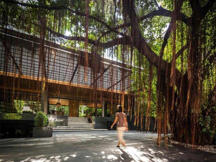 泰国AdLib酒店庭院