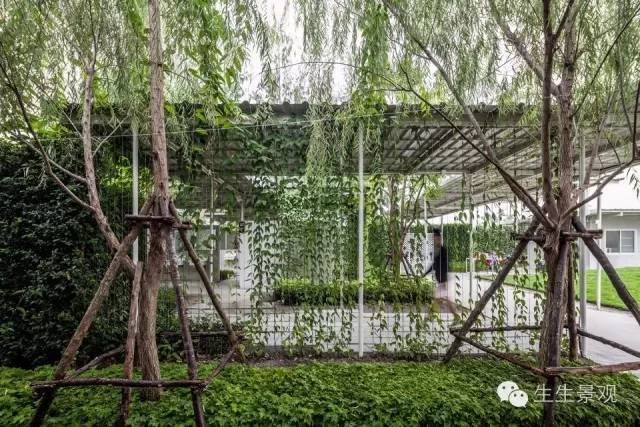 农业景观的意义_93