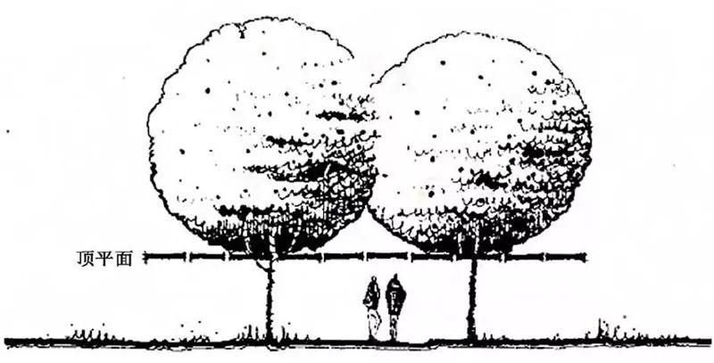 植物造景·实用景观设计来一波_16