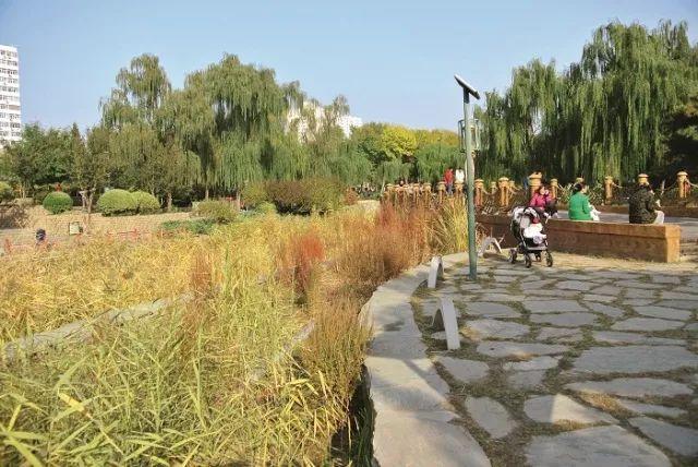 [植物配置]历史景观保护与重建中的植物景观营造_6
