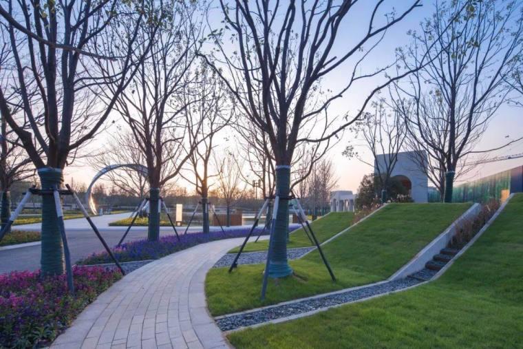上海万科安亭湖语森林景观-10