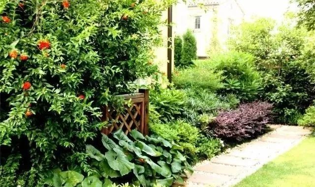 实用 景观植物设计方法(图文解析,值得收藏)_32