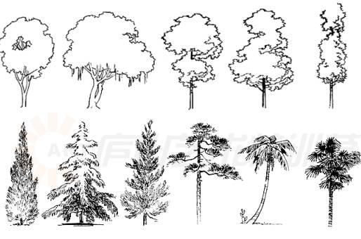 景观手绘基本技法,超实用!_4