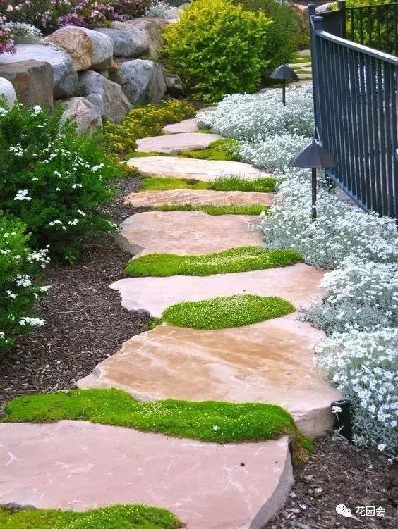 花草与石板的关系•花园小径_1