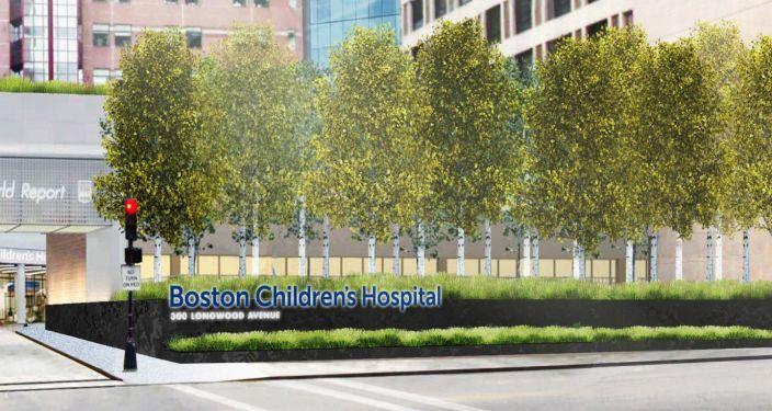 美国儿童医院入口景观实景图 (2)