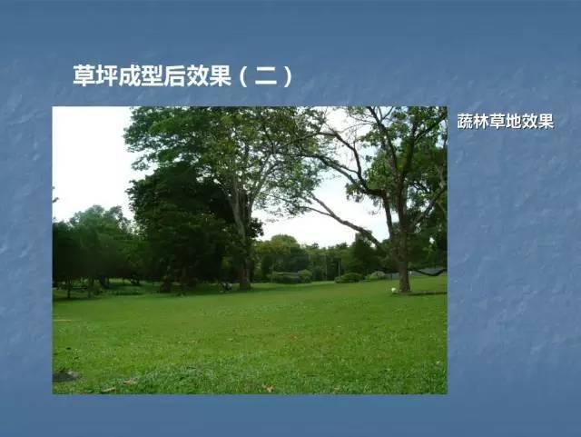 龙湖景观施工工艺标准效果(让你更懂现场)--软景篇_31