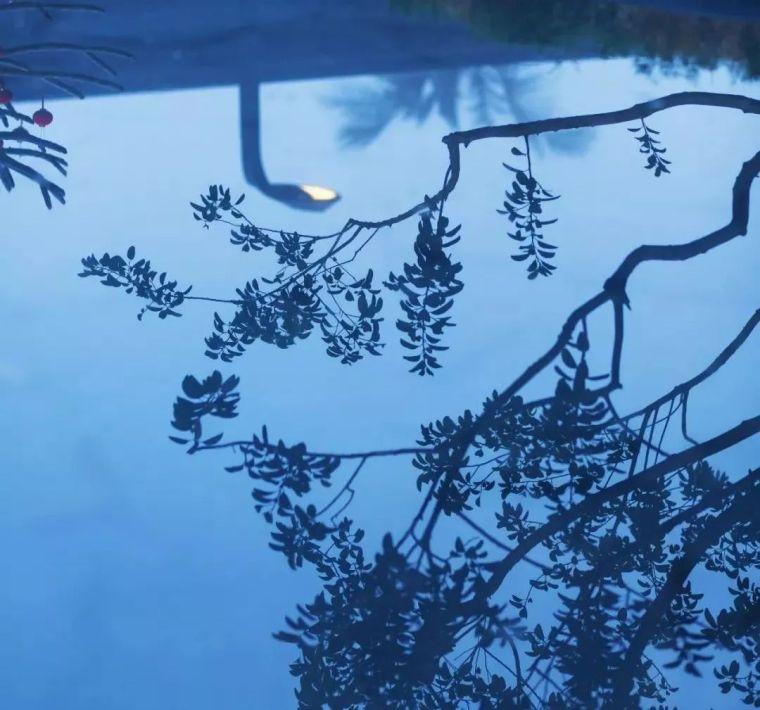 奢而不过,简而不凡——海口融创观澜湖公园壹号丨境作品