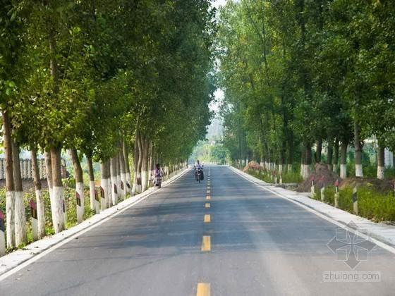 农村公路道路硬化工程施工组织设计(道路排水,2013)
