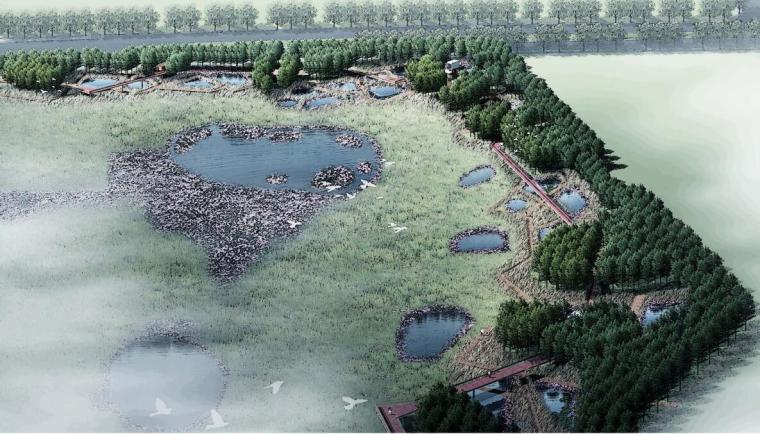 [哈尔滨]某新区生态湿地公园景观方案设计——土人设计