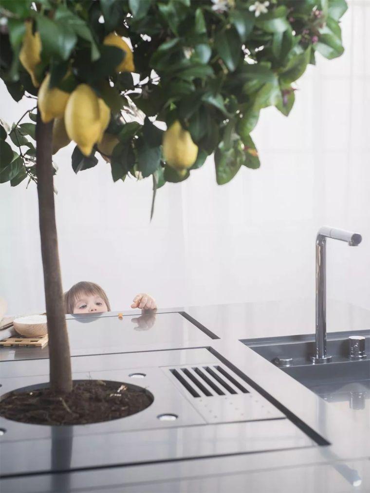 """""""未来10年的厨房""""是什么样子?_4"""