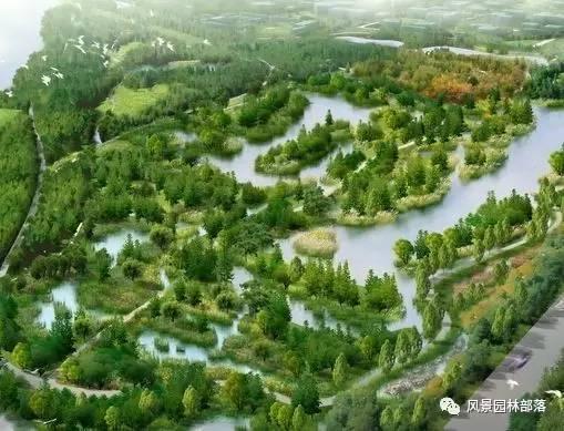 生态修复与生态恢复的那些梗你知道多少?_3