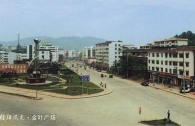 [湖南]桂阳县芙蓉东路提质改造工程项目市政给排水施工程