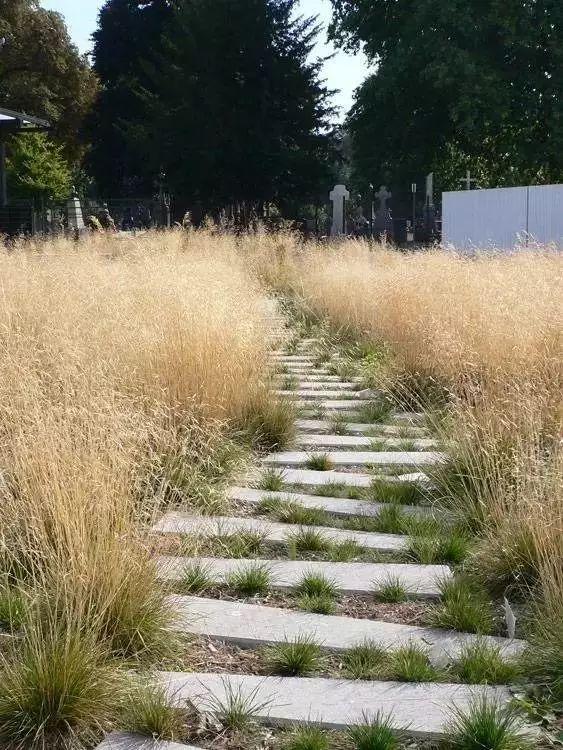 """园林路径设计的那些""""套路""""!_16"""