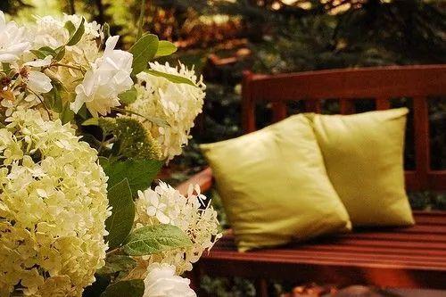 世界那么大,我却只想要个小院花开满园,自在从容……_25