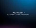 上海和声东湖项目运营策略(共130页)