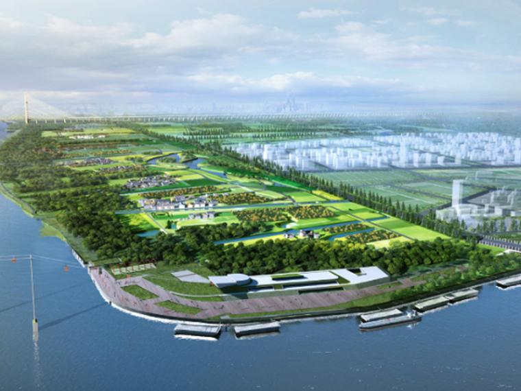 [上海]闵行浦江郊野公园景观设计(农林,滨水码头)