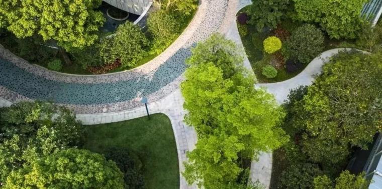 图解园林景观之乔木种植秘诀