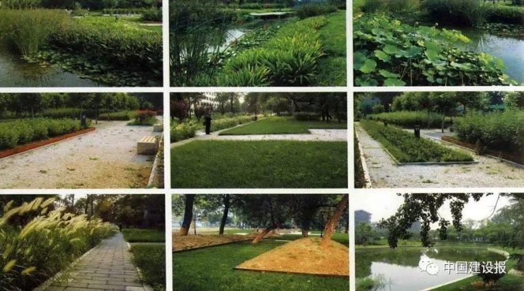 资质取消后,如何保证园林绿化工程质量?