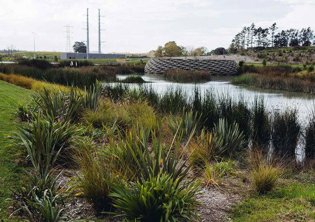 新西兰Kopupaka湿地公园景观设计_9