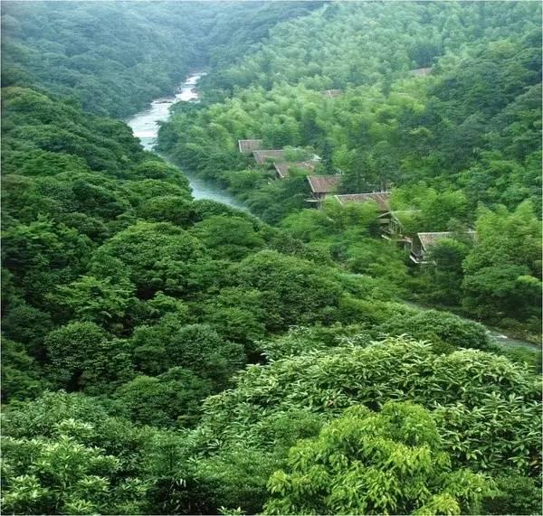中国最受欢迎的35家顶级野奢酒店_131