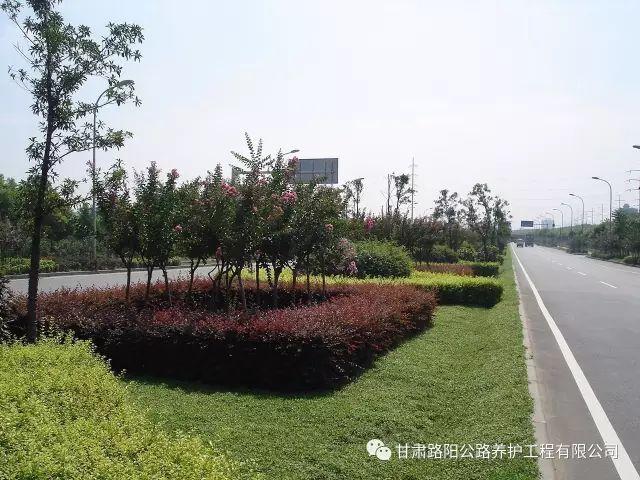 市政道路沥青混凝土路面工程施工技术浅析