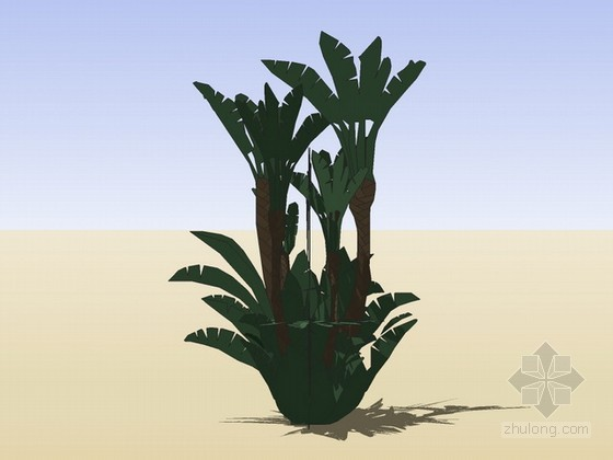植物组件sketchup模型下载
