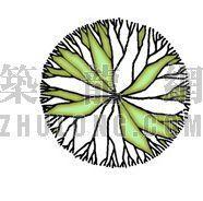 平面彩图树19