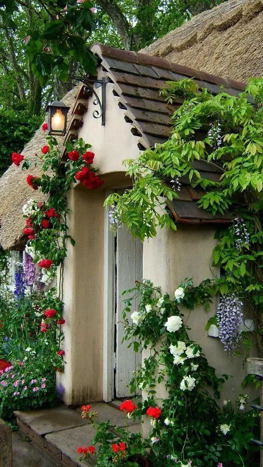 世界那么大,我却只想要个小院花开满园,自在从容……_2