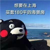 日本的传统房屋,却要中国人来保护?_1