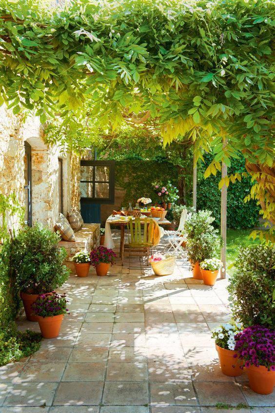 想要一个小院子,花开花落一辈子_1