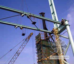 上海某钢厂合塔金化钢结构安装方案