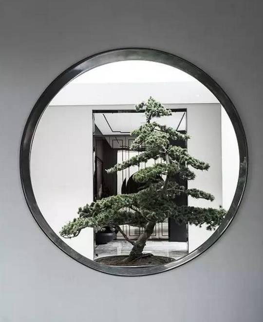 无窗,不园林!_11