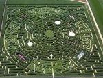 [景观设计]形始于图案,色归于植物——模(魔)纹花坛!