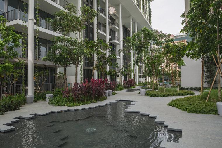 新加坡Tembusu雨林住宅-6