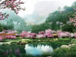 [云南]樱花园特色旅游观光产业园景观规划设计方案