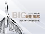 蛇形画廊|建筑Rhino参数化案例实战