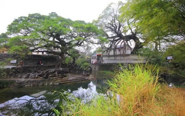 中国最美的20个地方,看看你去过几个?_21