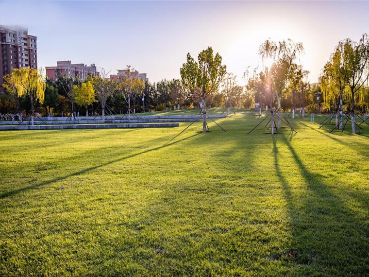 天津市西青区张家窝镇中心公园
