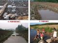 河道生态栖息地的修复设计与施工过程详解