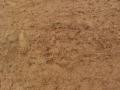 """岩土工程中常见的""""问题土"""""""
