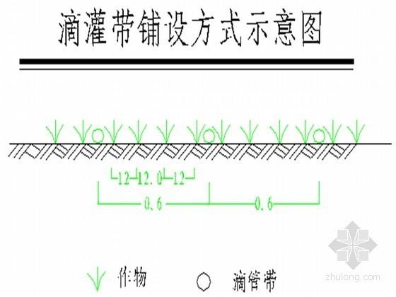 [新疆]20366亩农业高效节水建设项目实施方案(机井加压滴灌)